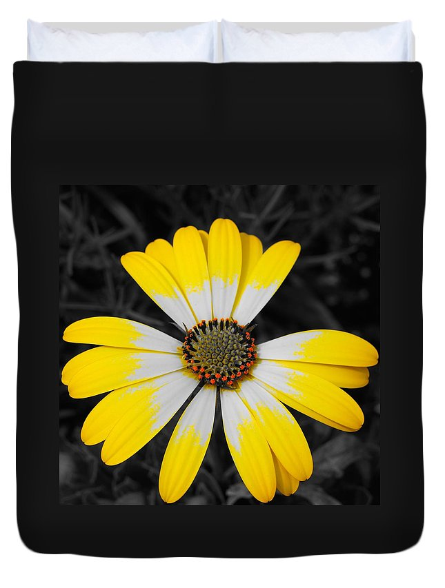 Daisy Duvet Cover featuring the photograph Daisy Crown by Tim G Ross