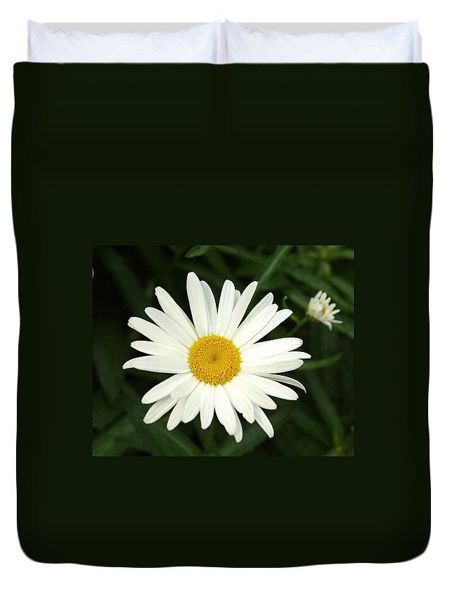 Daisy Duvet Cover featuring the photograph Daisy Days by Carol Sweetwood