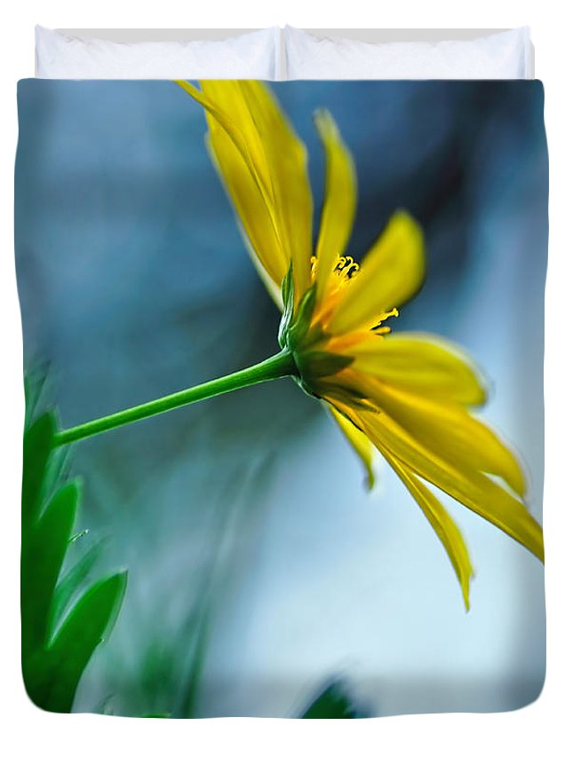 Photography Duvet Cover featuring the photograph Daisy In The Breeze by Kaye Menner
