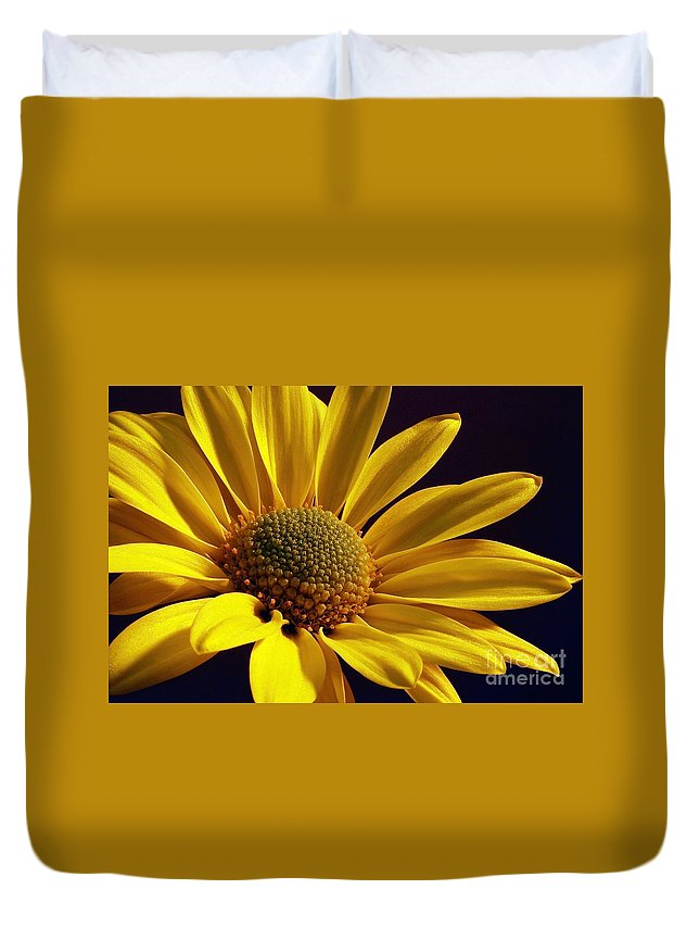 Flower Duvet Cover featuring the photograph Daisy by Lois Bryan