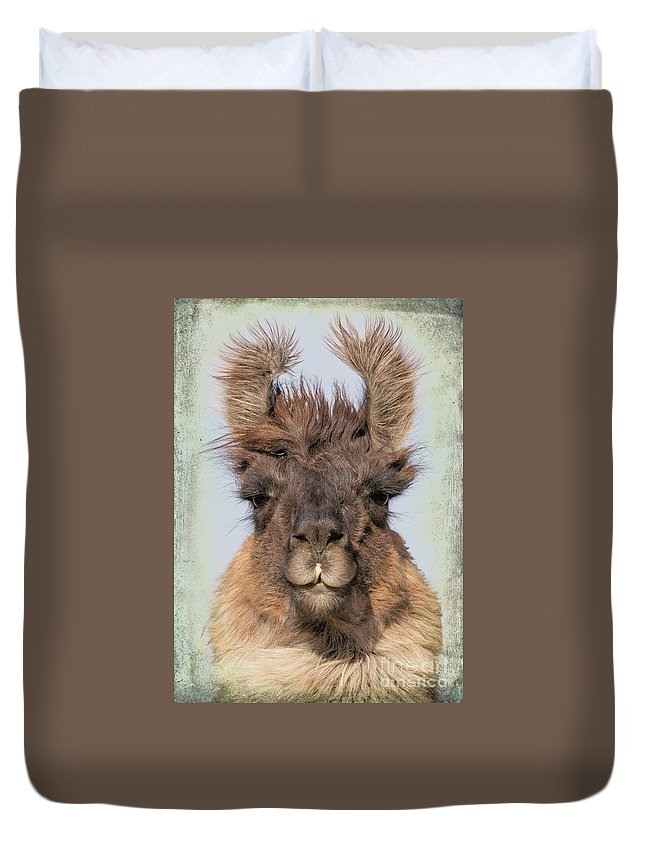 Animals Duvet Cover featuring the photograph Dali Llama by Marti Huzarski