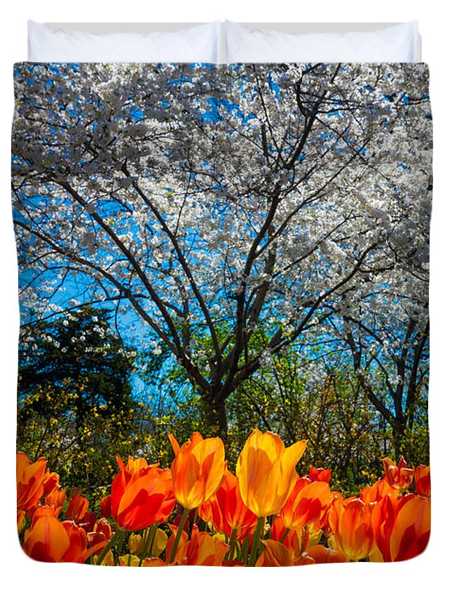 America Duvet Cover featuring the photograph Dallas Arboretum Tulips And Cherries by Inge Johnsson