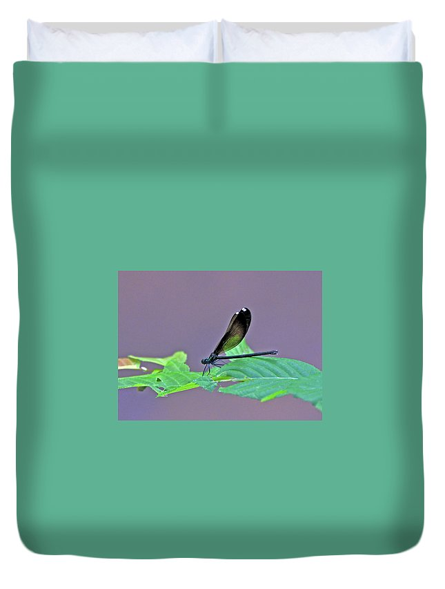Nature Duvet Cover featuring the photograph Damselfly by Kay Lovingood