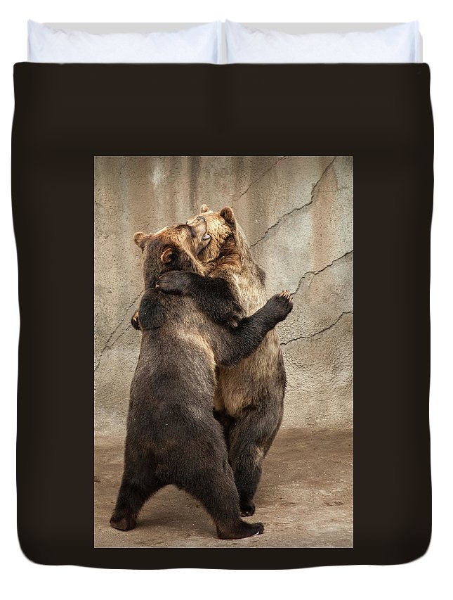 Animals Duvet Cover featuring the photograph Dancing Bears by Stewart Helberg