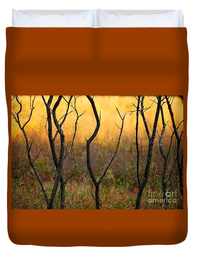 Dance Duvet Cover featuring the photograph Dancing Trees by Randy Pollard