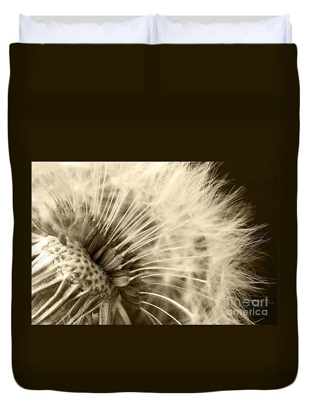 Dandelion Duvet Cover featuring the photograph Dandelion 8 by Micah May