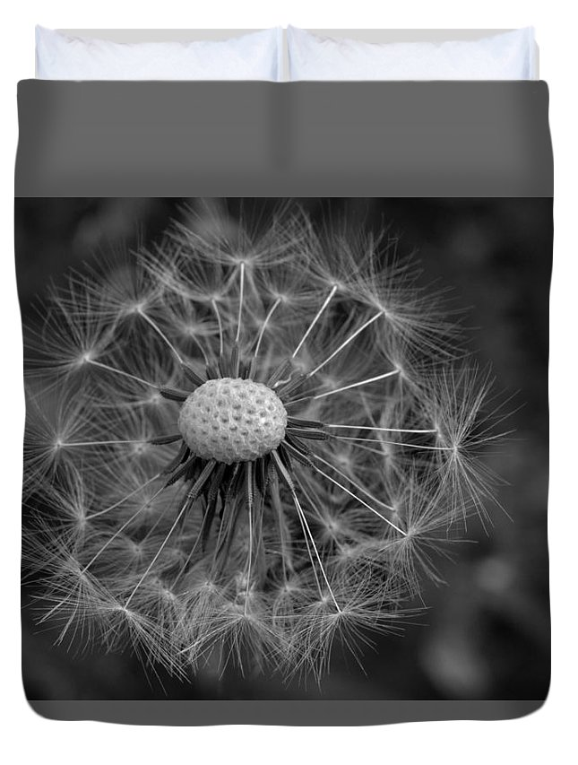 Dandelion Duvet Cover featuring the photograph Dandelion by Cathy Lovell