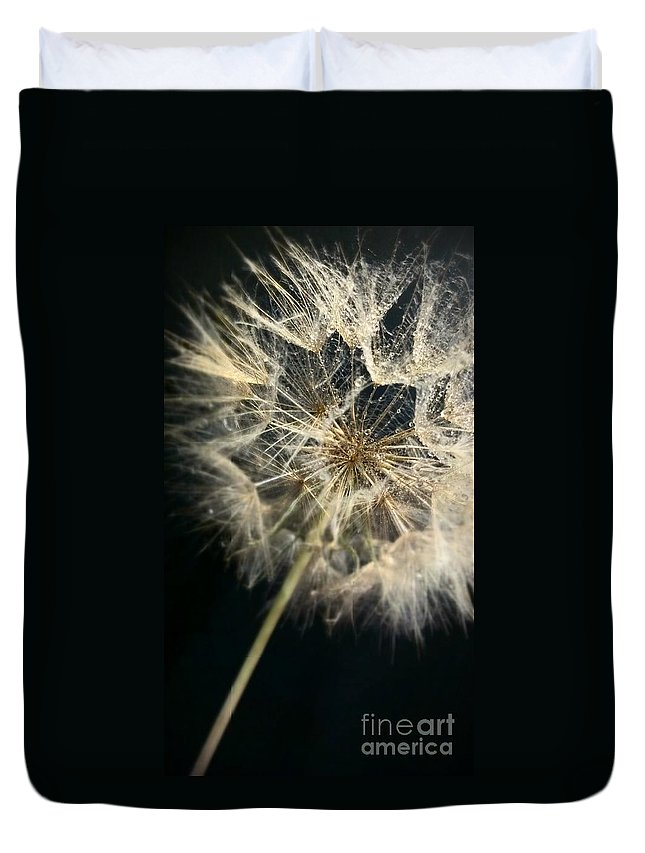 Dandelion Duvet Cover featuring the photograph Dandelion Forty One by LKB Art and Photography