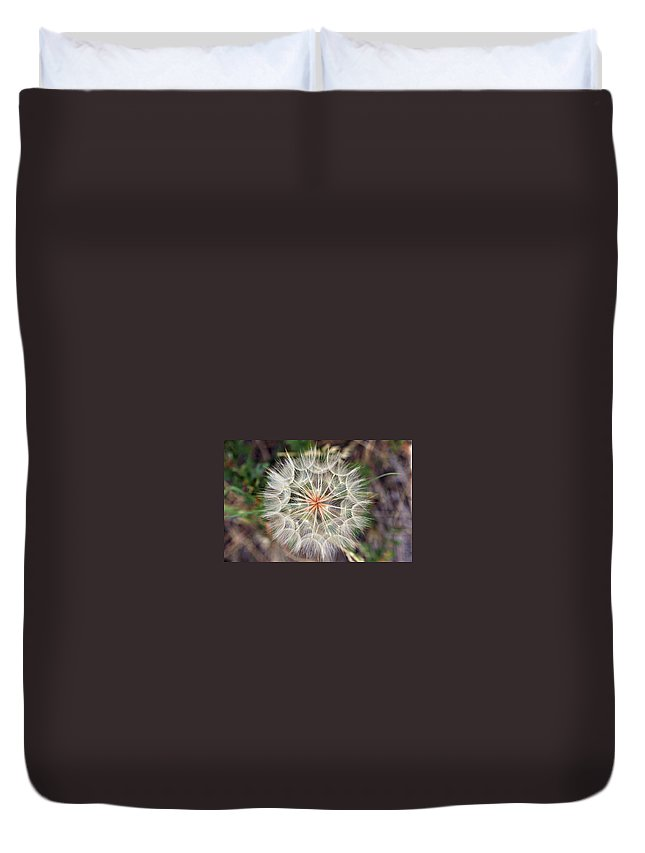 Dandelion Duvet Cover featuring the photograph Dandelion Fuzz by Marilyn Hunt