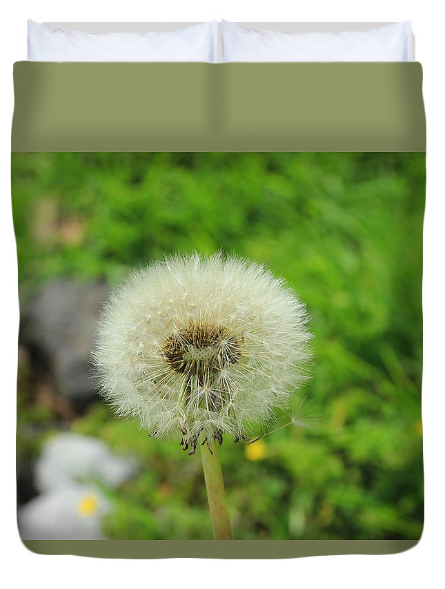 Dandelion Duvet Cover featuring the photograph Dandelion Seed by Robert Hamm