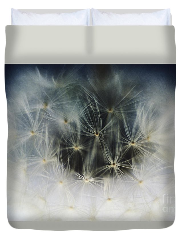 Abstract Duvet Cover featuring the photograph Dandelion Seeds by Larry Dale Gordon - Printscapes