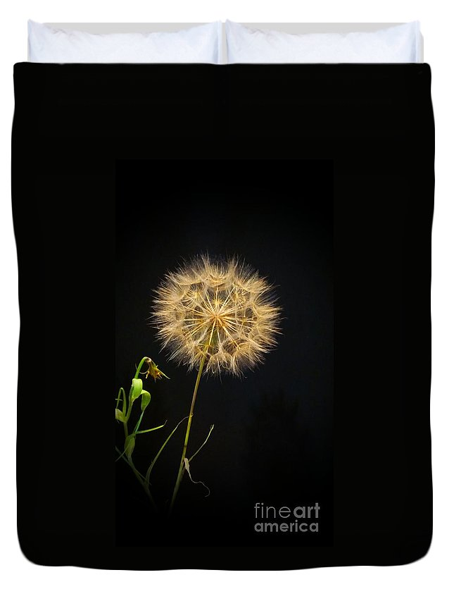 Dandelion Duvet Cover featuring the photograph Dandelion Thirty Nine by LKB Art and Photography