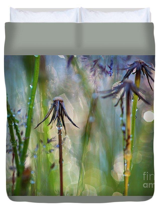 Dandelion Duvet Cover featuring the photograph Dandelions Close-up by Jim Corwin