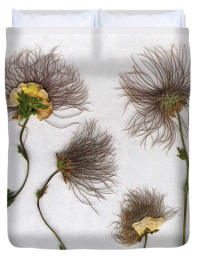 Dandelion Duvet Cover featuring the photograph Dandelions by Stefania Levi