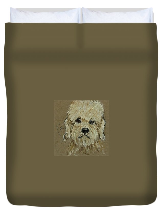 Dandie Dinmont Terrier Duvet Cover featuring the drawing Dandie by Cori Solomon