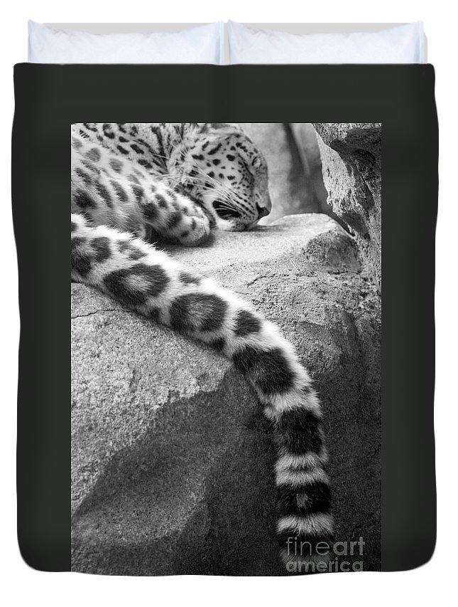 Leopard Duvet Cover featuring the photograph Dangling And Dozing In Black And White by Mary Mikawoz