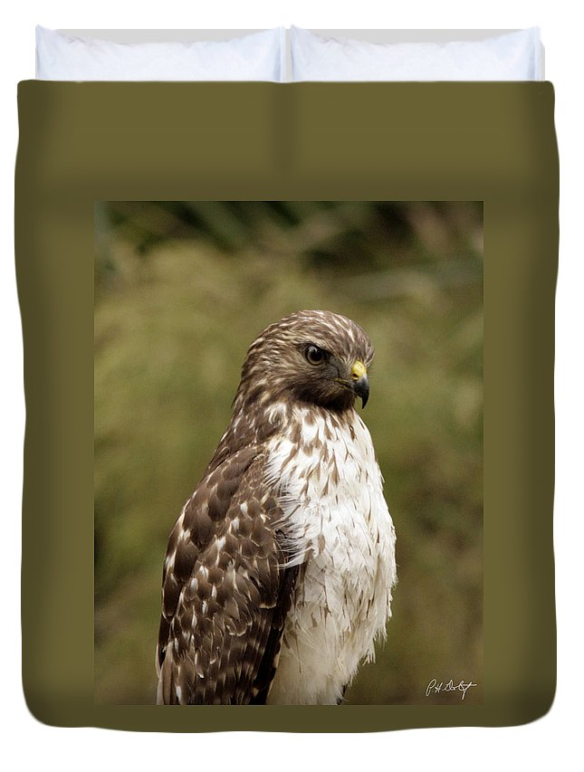Bird Duvet Cover featuring the photograph Dark Beauty by Phill Doherty