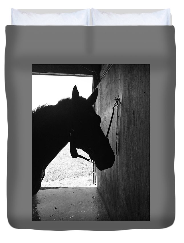 Horse Duvet Cover featuring the photograph Dark Horse by Joseph Caban