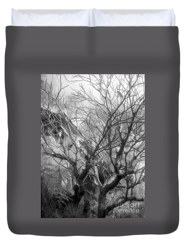 Infrared Photography Duvet Cover featuring the photograph Day Dream by Richard Rizzo
