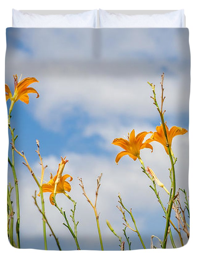 Day Duvet Cover featuring the photograph Day Lilies Look To The Sky by Debra Martz