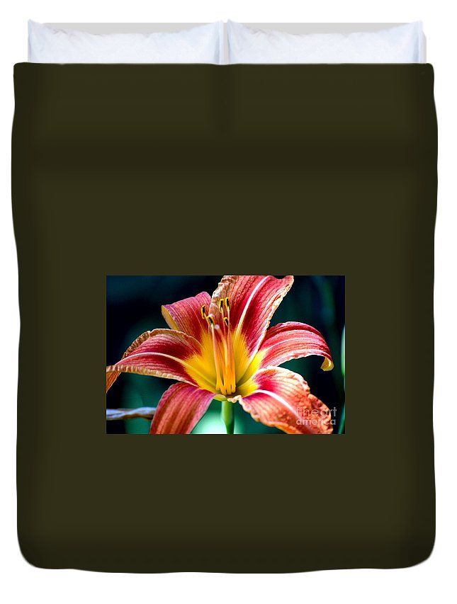 Landscape Duvet Cover featuring the photograph Day Lilly by David Lane