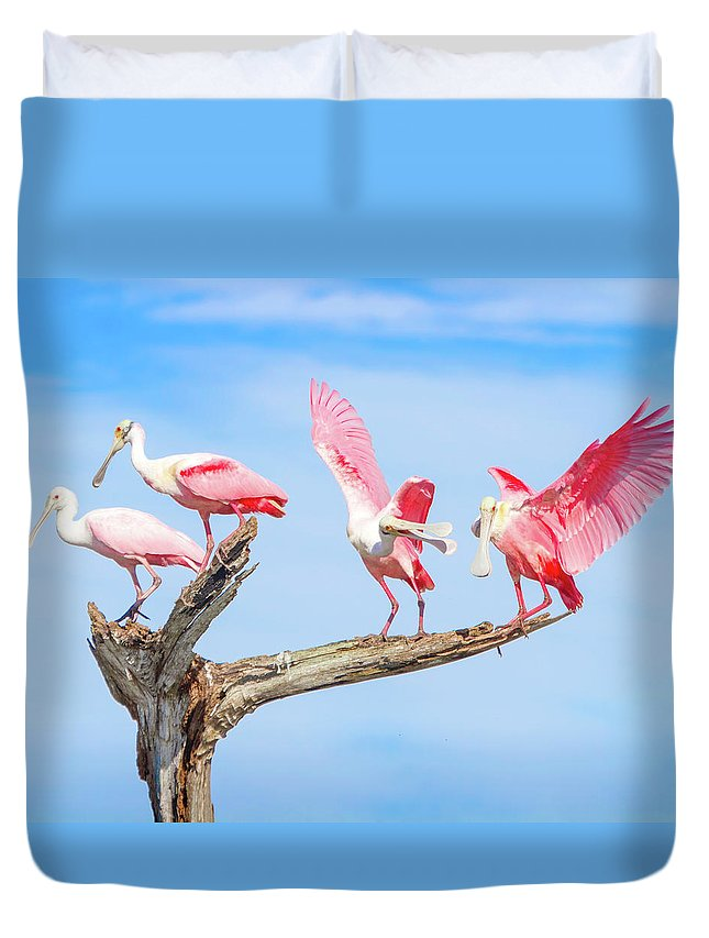 Roseate Spoonbill Duvet Cover featuring the photograph Day Of The Spoonbill by Mark Andrew Thomas