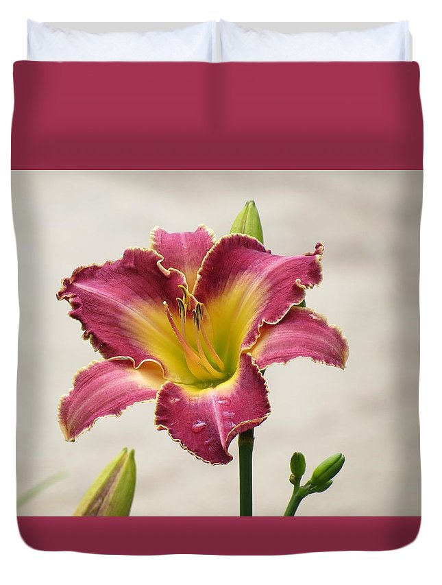 Cherokee Heritage Daylily Duvet Cover featuring the photograph Daylily Delight by MTBobbins Photography