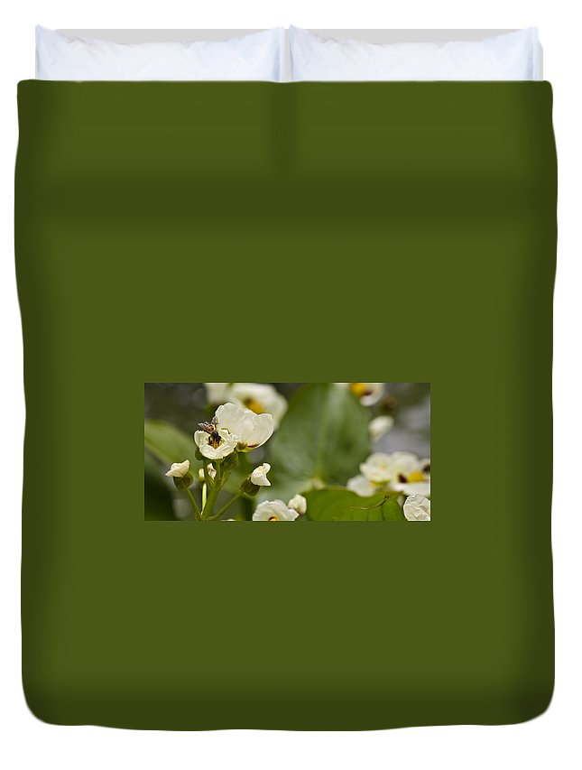 J Paul Getty Duvet Cover featuring the photograph Days Work by Teresa Mucha