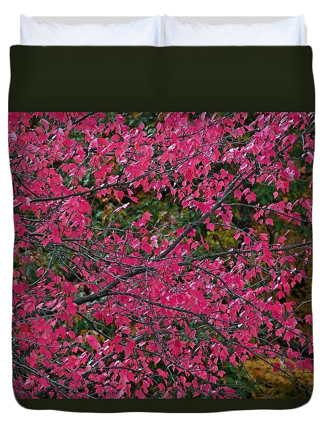Autumn Duvet Cover featuring the photograph Dazzled By Red by Michiale Schneider