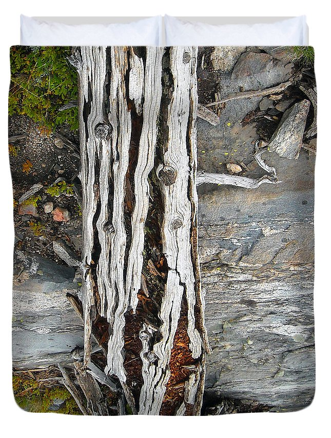 Blue River Duvet Cover featuring the photograph Dead Tree Above Tree Line I by Joanna Whitney