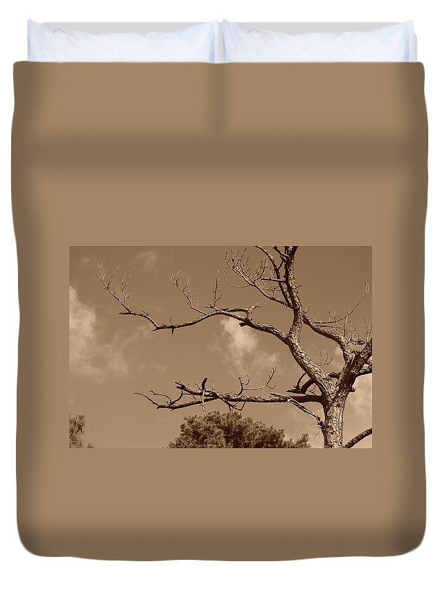 Sepia Duvet Cover featuring the photograph Dead Wood by Rob Hans