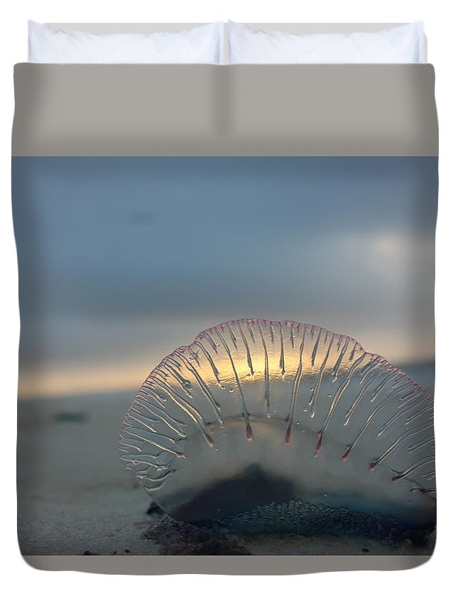 Beach Duvet Cover featuring the photograph Deadly Beauty by Kenneth Christenson