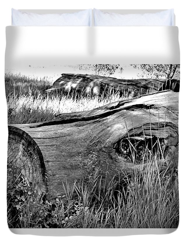 Deadwood Duvet Cover featuring the photograph Deadwood On Cherry Creek Trail 2 by Robert Meyers-Lussier