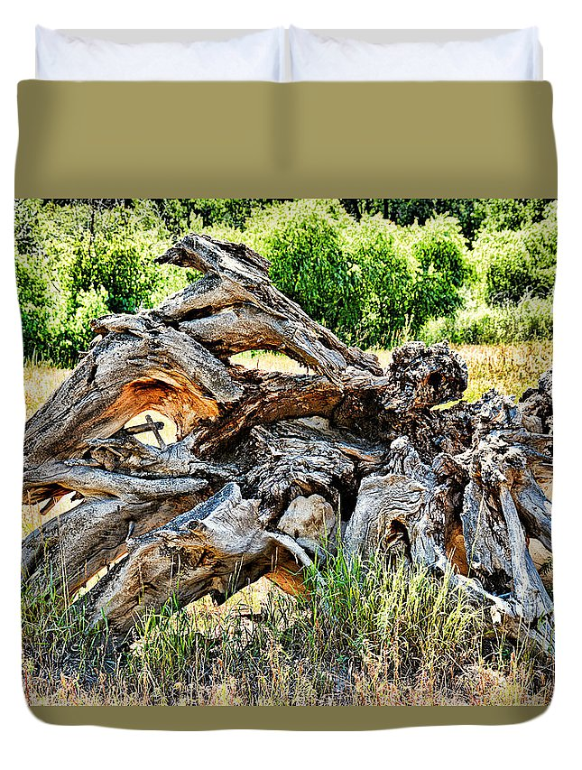 Deadwood Duvet Cover featuring the photograph Deadwood On Cherry Creek Trail 4 by Robert Meyers-Lussier