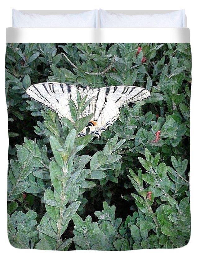 Duvet Cover featuring the photograph Dear Butterfly by Iolanda Schena