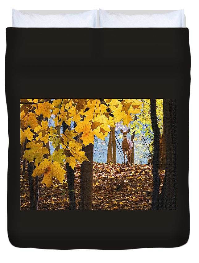 Nature Duvet Cover featuring the photograph Dear In The Sunlight by Sharon Foster