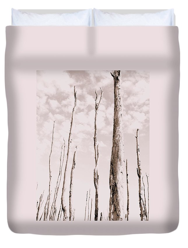 Forest Duvet Cover featuring the photograph Death Of A Forest by Ed Smith