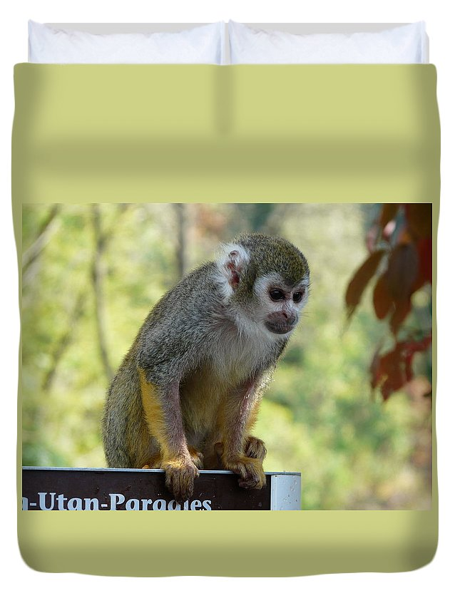 Animal Duvet Cover featuring the photograph Deceptive Paradise by Valerie Ornstein