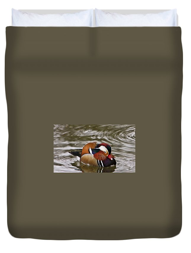 Duck Duvet Cover featuring the photograph Decorated Duck by Douglas Barnett