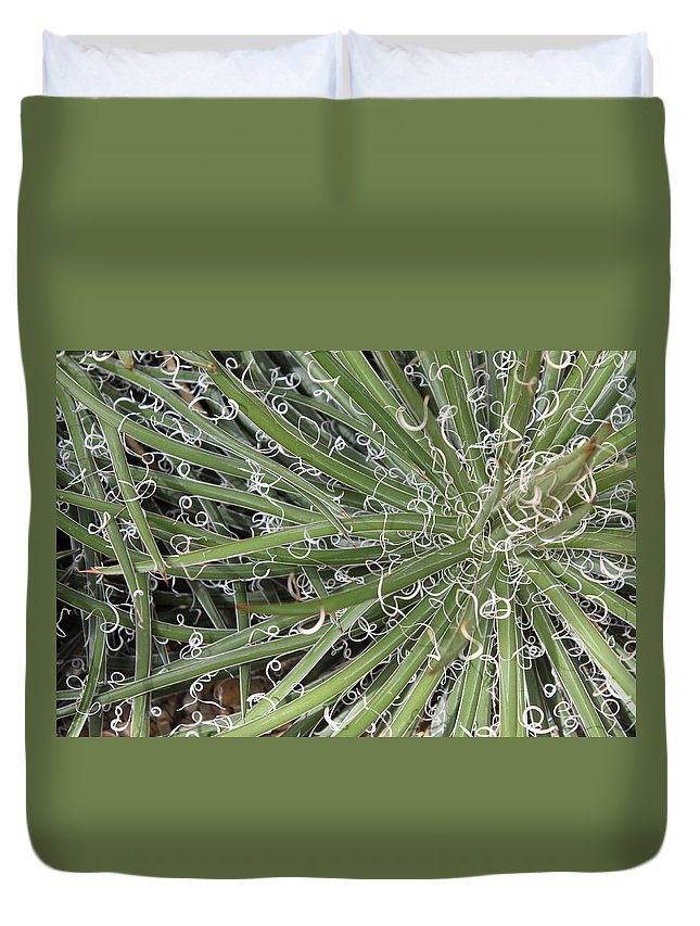 Nature Duvet Cover featuring the photograph Decorations by Munir Alawi