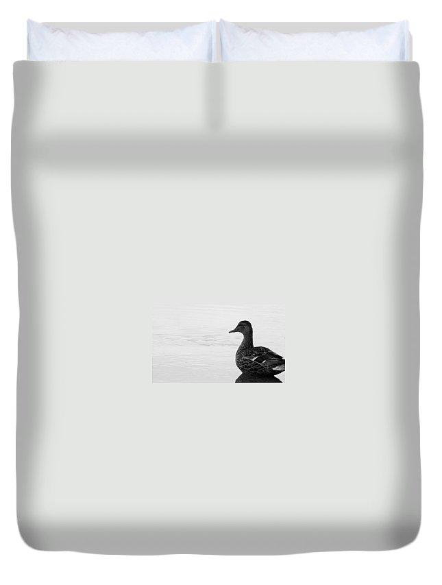 Bird Duvet Cover featuring the photograph Decoy by Ed Smith