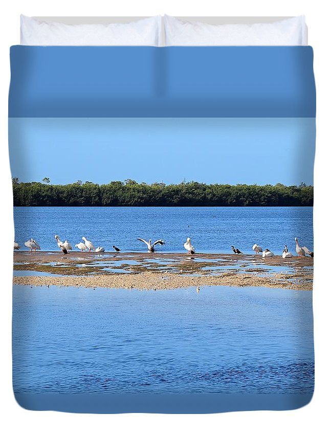 Pelican Duvet Cover featuring the photograph Deep Haven by Michiale Schneider