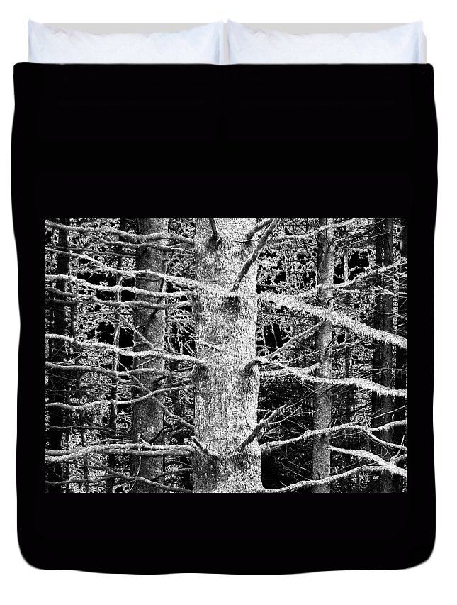 Woods Duvet Cover featuring the photograph Deep In The Woods by Will Borden