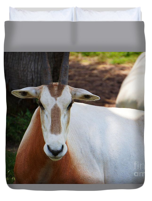 Duvet Cover featuring the photograph Deep Stare by Ronald Chacon