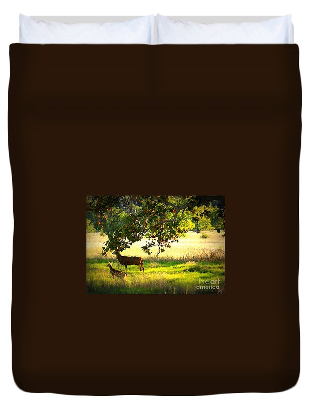 Deer Duvet Cover featuring the photograph Deer In Autumn Meadow - Digital Painting by Carol Groenen
