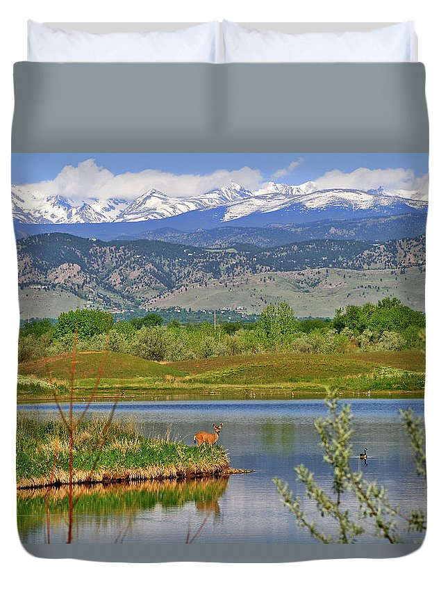 Deer Duvet Cover featuring the photograph Deer Island by Scott Mahon