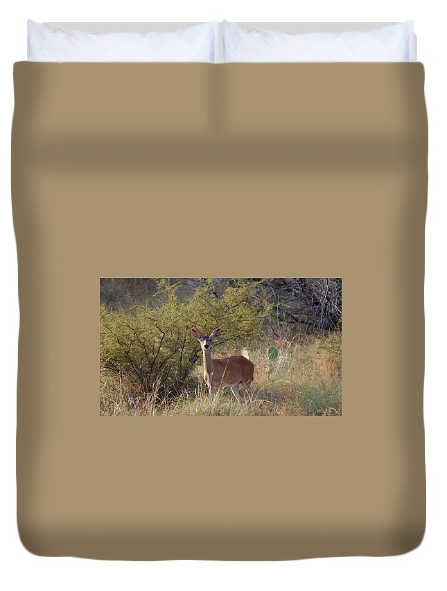 James Smullins Duvet Cover featuring the photograph Deer by James Smullins