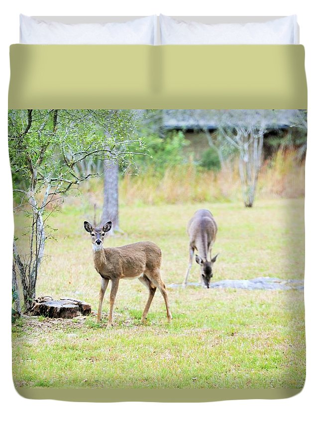 Duvet Cover featuring the photograph Deer18 by Jeff Downs
