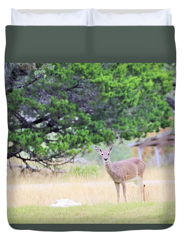 Duvet Cover featuring the photograph Deer21 by Jeff Downs