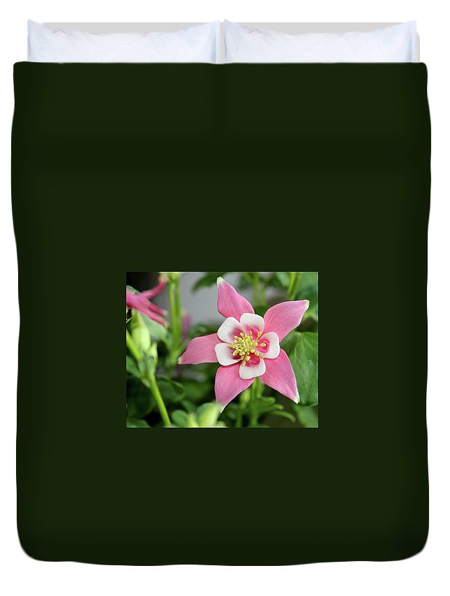 Pink Duvet Cover featuring the photograph Delicate Pink by Jill Myers